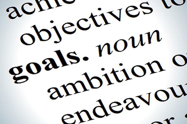 site goals